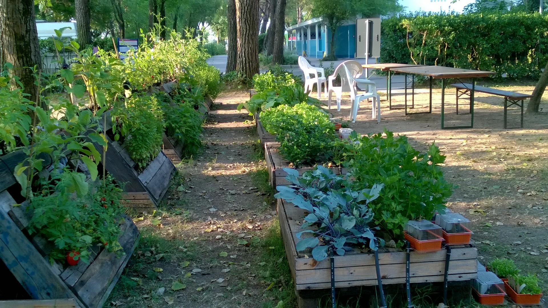 orto in cassettoni 2 ambra garden designer