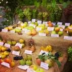 frutti anrichi fabbian